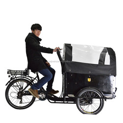 CE worthy bakfiets pedal assisted cargo electric large tricycle with cabin for sale