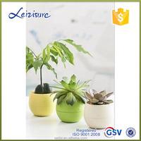 christmas ornament rose flower plastic pots for plants