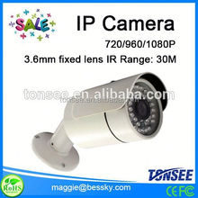 Big Sale IP camera 1/3-inch Sony Icx673ak Ccd, Fishing Camera, alibaba express in spanish