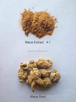 Natural Herbal Extract Sex Medicine Enlarge Penis Maca Extract 3:1 4:1 10:1 20:1 Maca Powder free sample