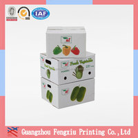 Quality Durable for Shipping Corrugated Vegetable Carton Box