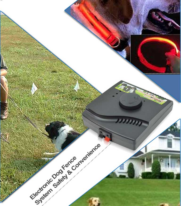 Waterproof dog shock collars TZ-PET850 No bark collar Waterproof&Rechargeable