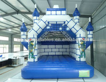 Inflatable bouncy castle,naughty castle