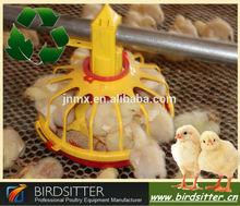 Pollos lucha venta