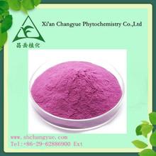 Factory supply Purple Sweet Potato Extract /Purple potato P.E. 25% Anthocyanin