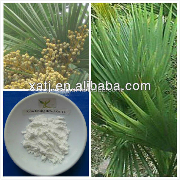 manufacturer supply saw palmetto extract for treating prostate