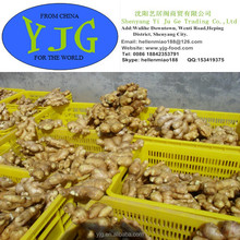 Chinese fat root fresh ginger, air dried ginger buyer for good quality and low price