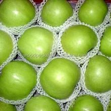 green apple fruit / apple price