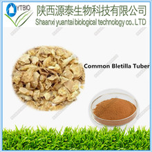 5:1 10:1 20:1 Natural Common Bletilla Rubber Extract made in china