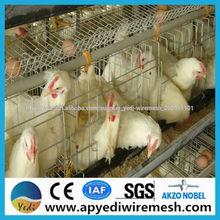 el mejor precio de pollos de engorde de pollo jaula