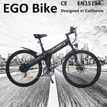 Flash,2015 low price chinese electric bike with EN15194,cargo bicycle