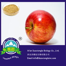Factory supply apple extract with competitive price