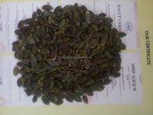 2015 New Crop Grade AA GWS Pumpkin Seeds