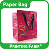 High Quality Full Color Printing Paper Bag For Gift
