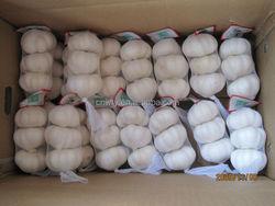 2015 China bulk low price garlic