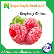 GMP Manufacture Supply Raspberry seeds extract Ketone 4%