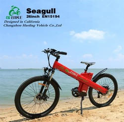 Seagull, high speed powerful electric dirt bike for adults 48v