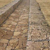 Professional Manufacturer gabion wire mesh box control water and soil erosion