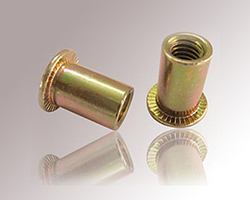 M3 M4 M5 M6 M8 M10 M12 Flat Head Rivet Nut