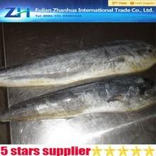 mahi seafood frozen fish fillet mahi mahi wholesale price
