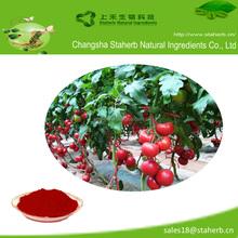 Factory Direct Supply 100% Natural Tomato Extract Lycopene P.E. Lycopene