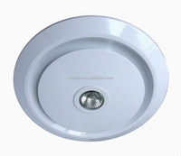 10 inch ceiling mounted Exhaust Fan with halogen lamp