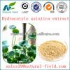 /p-detail/el-gotu-kola-extracto-de-la-hierba-en-polvo-precio-competitivo-y-el-mejor-servicio-300002131017.html