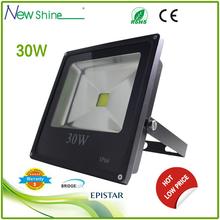 RGB and low voltage 30w led flood light spotlight