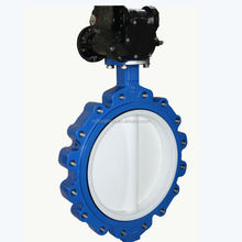 industrial Lug Type Butterfly Valve