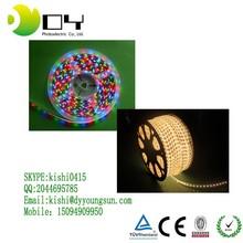 110v 220v led strip 5050 waterproof + rgb remote control 1000w controller /dimmer ( white color )