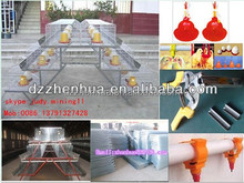 big factory professional quail cage/poultry farming equipment/ cage with high quality