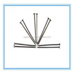 China bulk iron nail /common nail / steel nail