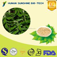 Good reputation supplier for Lycopodium serratum P.E. powder 1% Huperzine A