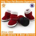 Nuevo diseño zapatos lindos perro