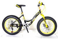 new model 7 speed 20 inch student mountain bike MSD-35 MEISIDA MTB bicycle fat /wide tyre