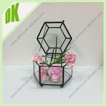 original design //terrarium shop sale //geometric glass terrarium decorations