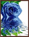 abstractas pintura al óleo de de flores , imagen de la flor pintura al óleo , pintura de flores de acrílico por números GX6323