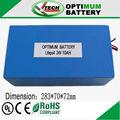 24v 10ah lifepo battery for electric bike