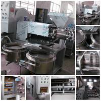 HOT SALE Automatic screw black seed sacha inchi 2015 professional soybean oil press/peanut oil press machine