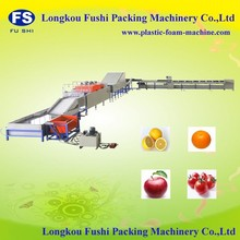 High output electronicfruit & vegetable sorting machine ,vegetable and fruit washing machine With CE Certification and ISO 9001