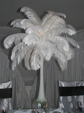 cheap ostrich feathers