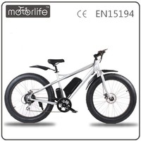MOTORLIFE/OEM Best Electric Bike/Offroad Electrical Bicycle With Battery
