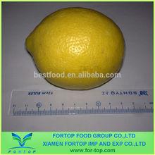 fruta fresca de limón precio