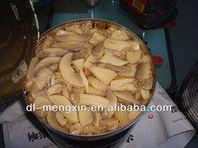 Canned Champignon Mushrooms Slices