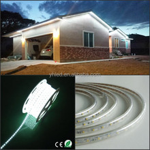 Blue red green cool white Color High Voltage SMD 5050 Flexible LED Strip 110V Waterproof 2 Years Warranty with ETL for America