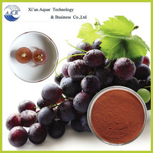 Anti-aging Great Quality Grape Seed P.E. High Orac Value Proantocyanidins 95%