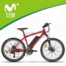 rear wheel motor electric mountain bike/electric bike battery charger