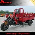 HUJU 250cc 300cc triciclo motor / adulto triciclo / triciclo motorizzato