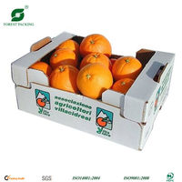 AVOCADO BOX/FRUIT BOX FP70828