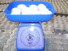 el mejor precio de huevos de gallina